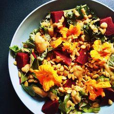 Salade Colorée Betteraves Lentilles Quinoa