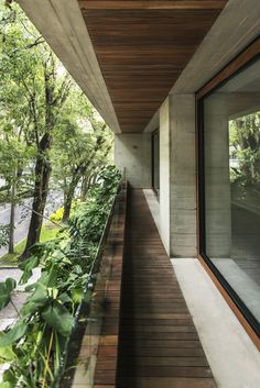 Vegetal Infusion At Hegel 516 by Frb Arquitectura, Mexico Are you a big fan of the nature? Then, you've come to the right place! The concept of the Hegel 516 House, realized by FRB Arquitectura is 'the continuity Concrete Architecture, Tropical Architecture, Minimalist Architecture, Residential Architecture, Interior Architecture, Chinese Architecture, Futuristic Architecture, Green Facade, Design Exterior