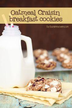 oatmeal craisin breakfast cookies recipe