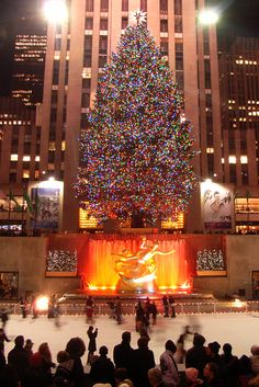Rockefeller Center  tree2007