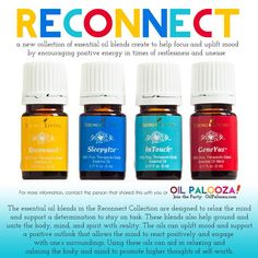 This new collection from Young Living was designed for those to help #RECONNECT with the world around them.