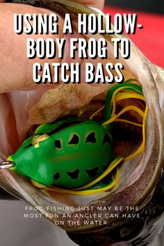 This article discusses the details of frog fishing for bass. Bass Fishing Lures, Fishing Life, Fishing Tackle, Frogs, Boating, Weapons, Bullet, Guns, Camping