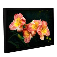 Fresh Flowers by Antonio Raggio Gallery-Wrapped Floater-Framed Canvas