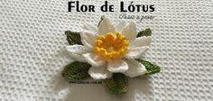 Flor de Lótus passo a passo