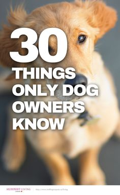 30 things only dog owners know