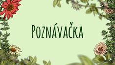 Poznávačka — Kouzelné bylinky — Česká televize
