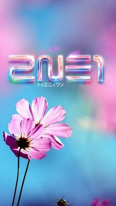#2NE1#FLOWER #PINK #WALLPAPER