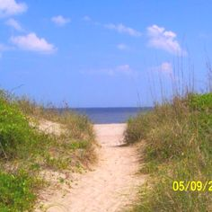 Edisto Beach, SC - go here every summer for a week