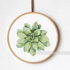 Title: Succulent 1 This PDF counted cross stitch pattern available for instant download. Skill level: Beginner. Pattern size (without white borders around): stitches: 70h x 70w ready design: 5.0h x 5.0w for 14-count fabric. You can frame it in 7 hoop Floss: 7 DMC colors 14-count Aida fabric This PDF pattern include: • image of finished design • description • black and white symbols chart • colorful symbols chart • color blocks chart • DMC floss list • beginners instructions! More plan...