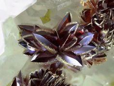 Stunning Carminite crystals from Clara Mine, Wolfach, Black Forest, Baden-Württemberg, Germany Photo © Mintreasure Amazing Geologist Minerals And Gemstones, Crystals Minerals, Rocks And Minerals, Stones And Crystals, Natural Crystals, Natural Gemstones, Gemstone Brooch, Crystal Magic, Mineral Stone