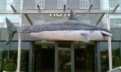 25' Shark Awards Prop Cork