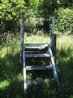 Old fence stile. So neat!