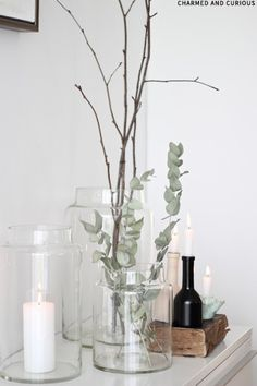 Styling with Eucalyptus
