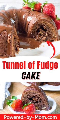 Make this delicious chocolate ganache recipe for a moist tunnel of fudge cake and watch everyone come running! This recipe is easier than you think. Delicious Cake Recipes, Best Cake Recipes, Amazing Recipes, Yummy Cakes, Yummy Food, Homemade Desserts, Homemade Cakes, Easy Desserts, Ganache Frosting