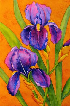 Drawing and painting purple irises can be a challenge! It is also a great opportunity to draw these intricate, undulating shapes, and to c. Wet On Wet Painting, Iris Painting, Watercolor Painting Techniques, Easy Watercolor, Watercolor Cards, Watercolor Landscape, Watercolor Flowers, Watercolor Paintings, Watercolors