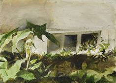 Andrew Wyeth. Акварели  Найдено: http://tanjand.livejournal.com/1467185.html