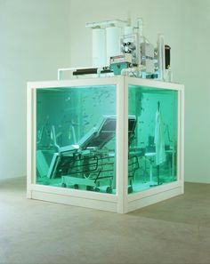 "Damien Hirst - Lost Love, 2000. The submerged gynaecologist's office in 'Love Lost' houses shoals of African river fish whilst 'Lost Love', by way of contrast, holds large black carp. While the works deal with surrealism, they also contain a ""hugely sexua"