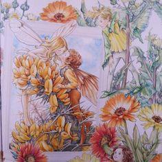. 〔ハリエニシダの妖精〕額内。 THE GORSE FAIRIES. . 〔ノゲシの妖精〕右側。 THE SOW THISTLE FAIRY. . 2016/8/12。 . #flowerfairies #シシリーメアリーバーカー #lineartbook #フラワーフェアリーズ #コロリアージュ #大人の塗り絵 #大人のぬりえ #색칠공부 #著色 #著色本 #colorpencil #coloringbooks #coloriage #coloringbook #adultcoloring #adultcoloringbook