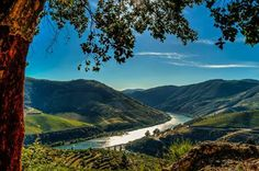 Rio Douro - na Foz do Tua Portugal, Douro, Rio, Golf Courses, Mountains, Landscape, Country, Water, Travel