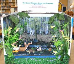 Diorama. [Fair Book Description]  The exhibit might show a prairie, grassland, agricultural, woodland, riparian, wetland and/or other area with wildlife habitat. Or show an area interspersed with several habitats such as windbreaks, farm fields, woods, waste areas, ditches and pastures for edge-adapted species. Label the habitats displayed and show at least five kinds of wildlife in their proper habitats. [Pawnee County Tag Information] Wildlife, Dept D, Div 340, SF) Class 008