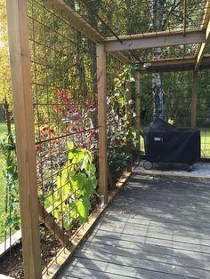70 Incredible Side House Garden Landscaping Ideas With Rocks - Garten Garden Trellis, Garden Beds, Home And Garden, Amazing Gardens, Beautiful Gardens, Landscape Design, Garden Design, Spring Landscape, Gazebos