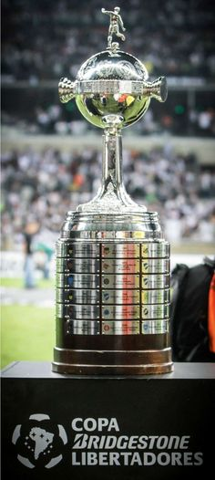 Copa libertadores Copa Football, Football Players, Sports Trophies, My Themes, Soccer, Jewelry Ideas, Iphone, Tattoos, Food