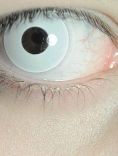 White #Contact #Lenses  Perfect for #Halloween.