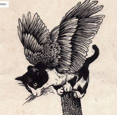 A Tressym (cat with wings)
