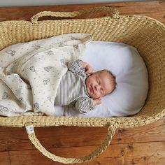 Moses Basket & Organic Bedding / Nature Baby