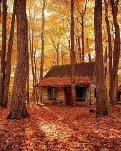 Into The Woods, Cabin In The Woods, Forest Cabin, Little Cabin, Autumn Scenery, Cabins And Cottages, Log Cabins, Cozy Cabin, 2 Instagram