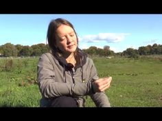 Identifying & harvesting Psilocybin Cubensis magic mushrooms Northern NSW - YouTube