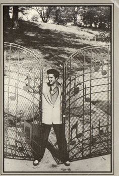 Elvis at Graceland Gates, another travel destination. If only Elvis was still there circa 1956 - his best years! Elvis Presley House, Graceland Elvis, Elvis Presley Family, Elvis Presley Photos, Sandro, Young Elvis, Elvis And Priscilla, Lisa, Old Postcards