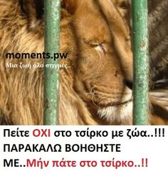 Say NO to circuses with animals…!PLEASE HELP ME..do not go to the circus..!!!  Πείτε ΟΧΙ στο τσίρκο με ζώα..!!!ΠΑΡΑΚΑΛΩ ΒΟΗΘΗΣΤΕ TA..Μήν πάτε στο τσίρκο..!!