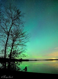 """""""Almost all leaves have fallen off the trees, only on bushes some are still hanging in there. Faint auroras create a mystic athmosphere at this lake shore near Oulunsalo, Finland.""""    © Thomas Kast, All Rights Reserved"""