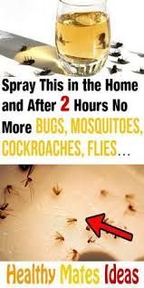Safe Cleaning Products, House Cleaning Tips, Cleaning Hacks, Household Products, Cleaning Recipes, Household Tips, Home Remedies For Roaches, Mosquito Spray, Diy Pest Control