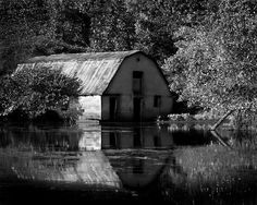 charming old barn being taken over by water