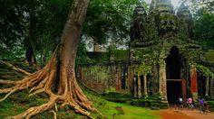 Bing fotos: West gate of Angkor Thom, Cambodia (© Alex Williams)