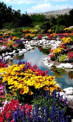 TEND to Your EMOTIONAL GARDEN nature | garden