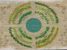 C.Santa Ângela Sustentabilidade: Jardins Mandala