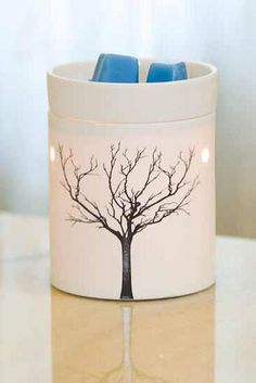 Tilia Mid-Size #Scentsy Warmer ♥    The simple, modern shape and glowing porcelain of Tilia allows the stark beauty of a tree in winter to shine through. ♥ https://charitajones.scentsy.us/Scentsy/Buy/ProductDetails/MSW-TILI