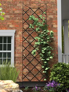 Our Jardin Flower Trellis is a metal trellis with a classic arch but an overall understated design ideal for clematis and other climbing plants. Metal Trellis, Wall Trellis, Privacy Trellis, Patio Trellis, Obelisk Trellis, Plant Trellis, Obelisks, Diy Trellis, Clematis Trellis