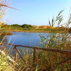 Lo splendido lago nel Parco delle Dune Costiere a Ostuni (Br)