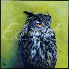 Whetū van den Oever Paintings|Art Gallery| New Zealand artist. 'Bandit' Oil Painting 30x30cm  Art  Owl More paintings on my website www.echt.nz or in my facebook page www.facebook.com/echt.nz