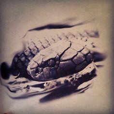 Cobra Tattoo, Snake Tattoo, Angel Tattoo Arm, Arm Tattoo, Cool Small Tattoos, Cool Tattoos, Tattoo Sketches, Tattoo Drawings, Ozzy Tattoo