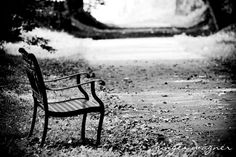 Black and White Photography - A Quiet Place - 4 x 6 fine art print - park bench trail woods serene light shadow wall art home decor.