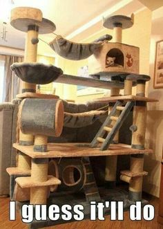 Holy mother of all cat towers!                              …