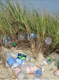 Cape Cod Environment Issues: the problem with disposable water bottles