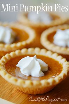 cream dessert recipes, fresh peach dessert recipes, dessert recipes for parties - Mini Pumpkin Pies Recipe! These are so easy and you might actually have room to try more than one dessert! Such a great idea! Mini Pumpkin Pies, Pumpkin Pie Recipes, Mini Pies, Fall Recipes, Holiday Recipes, Pumpkin Tarts, Mini Pie Recipes, Pumpkin Pie Cupcakes, Best Mini Pumpkin Pie Recipe