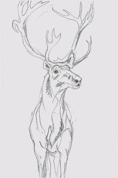 Mel Griffin, elk
