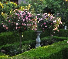 This garden is absolute perfection.  Le jardin d'Adrienne http://laviequotidienneeverydaylife.blogspot.fr